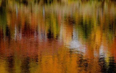 Have Fun in the Fall on Lake Lanier