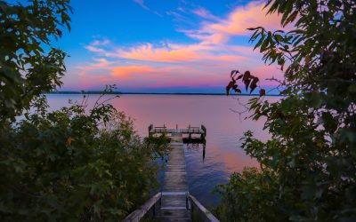 How to Hire A Lake Agent