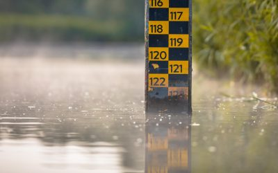 Why Lake Levels Matter When Purchasing or Listing Your Home