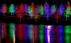Christmas lights reflected in lake water