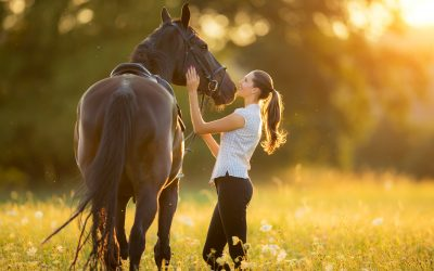 Featured Lux Home: An Equestrian Dream